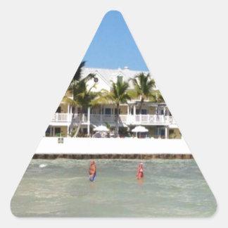 image.jpg Florida keys swimming Triangle Sticker