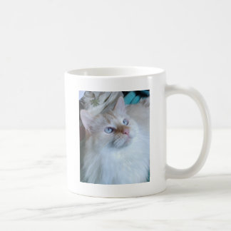 image.jpg mugs