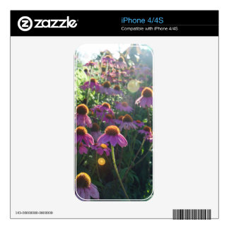 Image of a bunch of purple flowers decal for iPhone 4