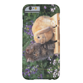 Image of a Kitten and a Lop Ear Rabbit Standing Barely There iPhone 6 Case