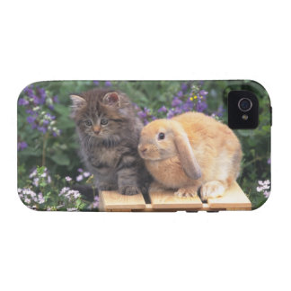 Image of a Kitten and a Lop Ear Rabbit Standing Vibe iPhone 4 Case