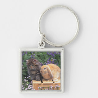 Image of a Kitten and a Lop Ear Rabbit Standing Keychain