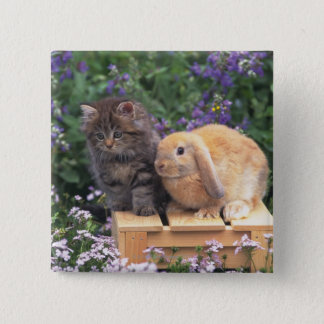 Image of a Kitten and a Lop Ear Rabbit Standing Pinback Button