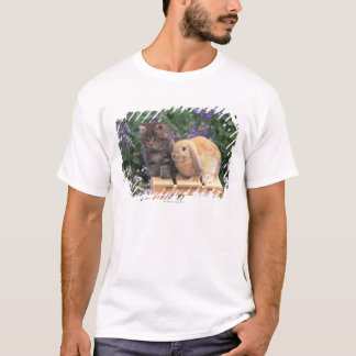 Image of a Kitten and a Lop Ear Rabbit Standing T-Shirt