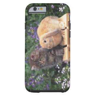 Image of a Kitten and a Lop Ear Rabbit Standing Tough iPhone 6 Case