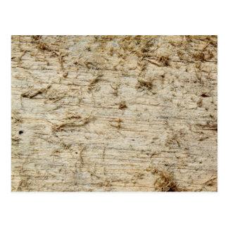 Image of Driftwood. Postcard