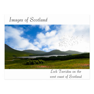 Image of Scotland for postcard