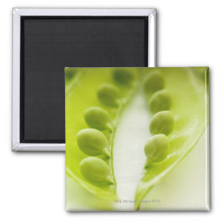 Image of three open pea pods, extreme close-up magnet