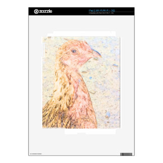 image pic chicken.png iPad 2 decals