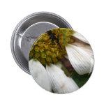 Imagen 133 [botón] pin