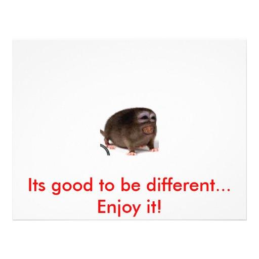 Imagen 7, sus buenos ser diferentes… ¡Goce de ella Tarjetón