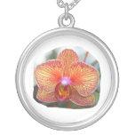 Imagen amarillo-naranja de la flor de la orquídea collar personalizado