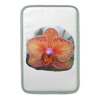 Imagen amarillo-naranja de la flor de la orquídea funda  MacBook