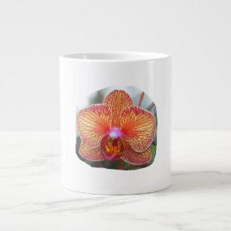 Imagen amarillo-naranja de la flor de la orquídea tazas jumbo