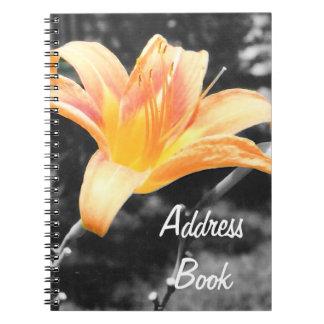 Imagen anaranjada del lirio de día cuadernos