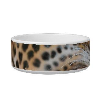 Imagen animal de la cabeza del jaguar del carrusel tazones para gatos