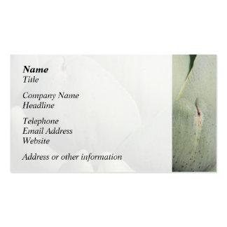 Imagen ascendente cercana de la alcachofa tarjeta de visita