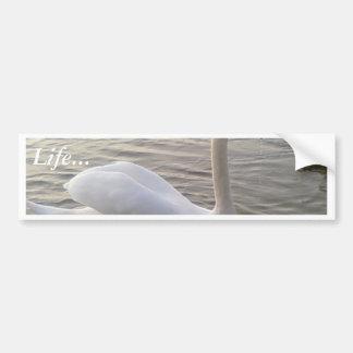 Imagen ascendente del cierre blanco del cisne pegatina de parachoque
