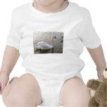Imagen ascendente del cierre blanco del cisne trajes de bebé