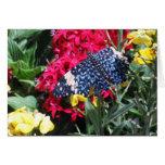 Imagen azul de la mariposa en tarjeta de felicitac