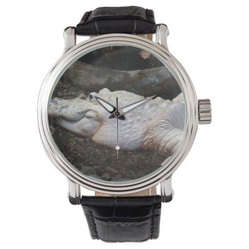 imagen blanca del estilo de la acuarela del relojes de mano