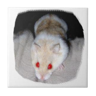Imagen blanca y rubia del hámster del albino azulejo cuadrado pequeño