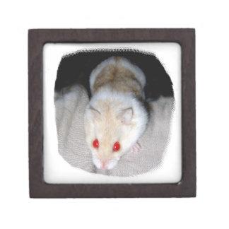 Imagen blanca y rubia del hámster del albino cajas de recuerdo de calidad