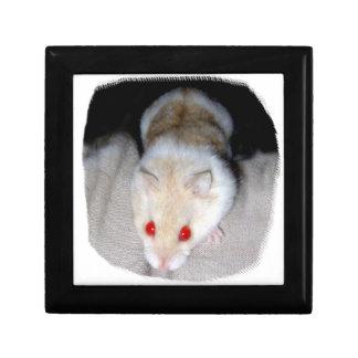 Imagen blanca y rubia del hámster del albino caja de joyas