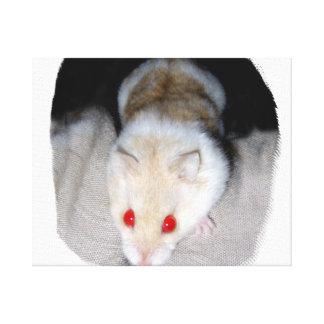 Imagen blanca y rubia del hámster del albino impresión en lona estirada