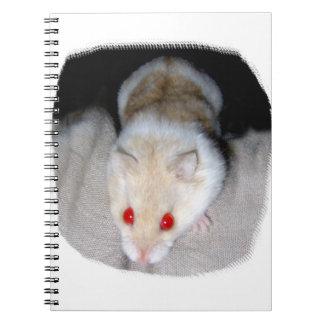 Imagen blanca y rubia del hámster del albino libreta espiral