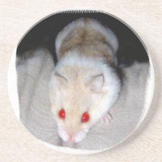 Imagen blanca y rubia del hámster del albino posavasos personalizados