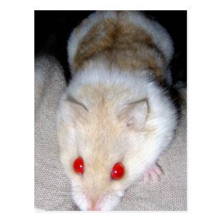 Imagen blanca y rubia del hámster del albino postal