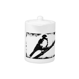 Imagen blanco y negro del pájaro