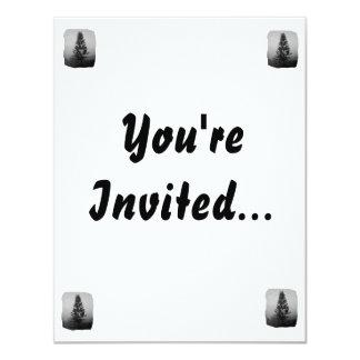 """Imagen blanco y negro del pino de Norfolk de Invitación 4.25"""" X 5.5"""""""
