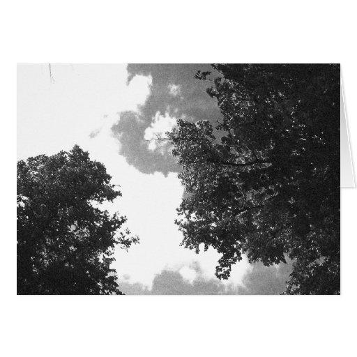 Imagen blanco y negro granosa de árboles y del tarjeta de felicitación