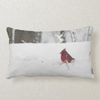 Imagen cardinal de la nieve del invierno del cojín