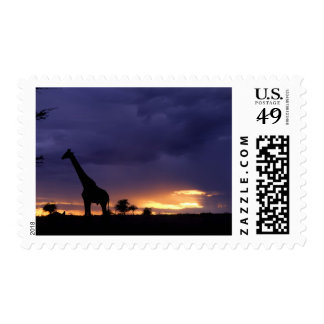 Imagen colorida de la última hora de la tarde de sello