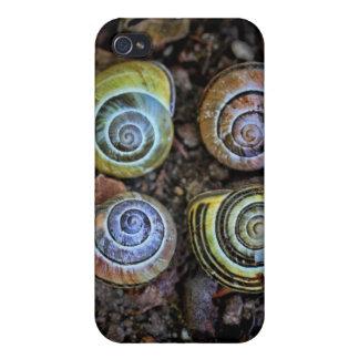 Imagen colorida de las cáscaras del caracol iPhone 4/4S fundas