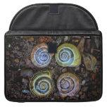 Imagen colorida de las cáscaras del caracol funda para macbook pro