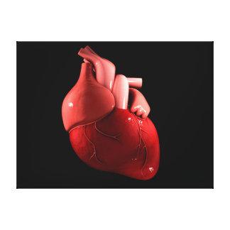 Imagen conceptual del corazón humano 2 impresiones en lona