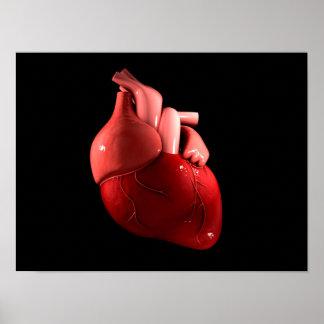 Imagen conceptual del corazón humano 2 póster