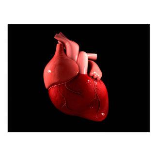 Imagen conceptual del corazón humano 2 postal