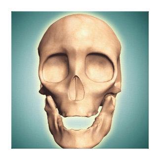 Imagen conceptual del cráneo humano, vista impresiones en lienzo estiradas