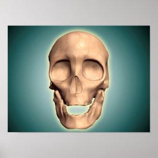Imagen conceptual del cráneo humano, vista póster
