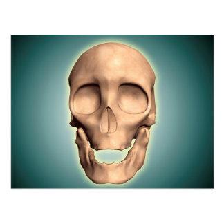 Imagen conceptual del cráneo humano, vista postales