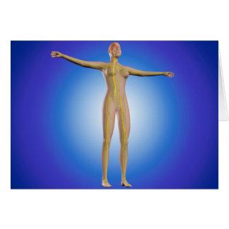 Imagen conceptual del sistema nervioso femenino tarjeta de felicitación