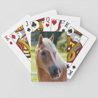 Imagen de caballos - un caballo con la melena cartas de póquer