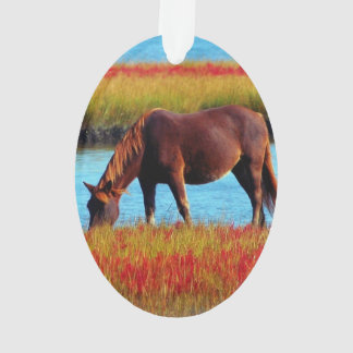 Imagen de caballos - un caballo que pasta cerca de