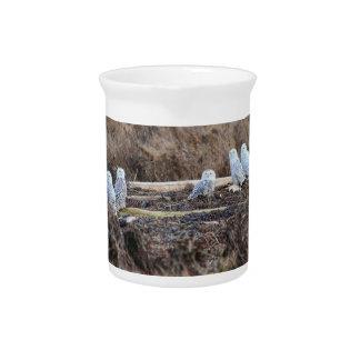 Imagen de cinco búhos Nevado Jarra Para Bebida