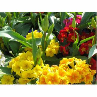 Imagen de diversas flores en flor esculturas fotograficas